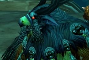 Moonkin