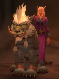 Cat form and belf friend